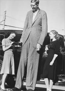 Robert wadlow - 2,72 m (amerika serikat,1918–1940)